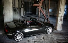 Alfa Spider Cup Ch026 19''