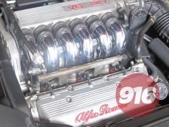 IMG 4321